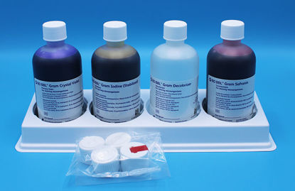 Picture of EA - DF-3328 - Gram's Stain Set (DF3328)